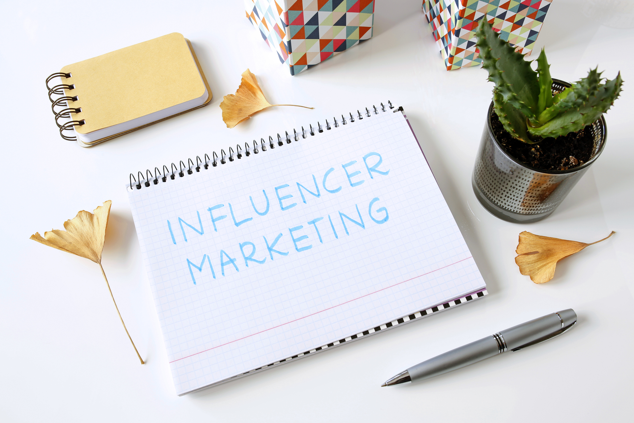 Why Transparency is the Biggest Trend in Influencer Marketing